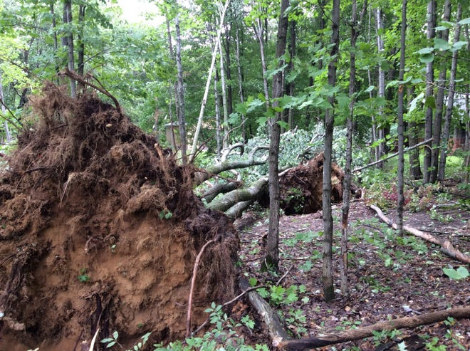 Storms and tornadoes uprooted trees and knocked out power to tens of thousands of people in western and middle Michigan.