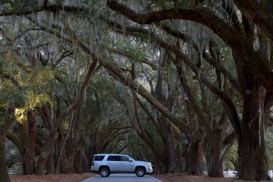 The latest-gen, 2014-2018 Cadillac Escalade was introduced to media in Georgia surrounded by Spanish Moss-draped live oak trees.