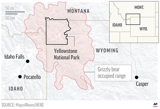 Map shows grizzly bear occupied range across Yellowstone National Park.; 2c x 3 inches; 96.3 mm x 76 mm;