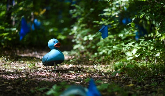 "A blue plastic duck is the only portion of the Bath Township art installation called ""The Blue Loop"" that Clinton County District Court Judge Michael Clarizio ruled can stay. Under an anti-junk ordinance, he ordered the rest of the art to be taken down Oct. 31. Artist Robert Park says he will appeal."
