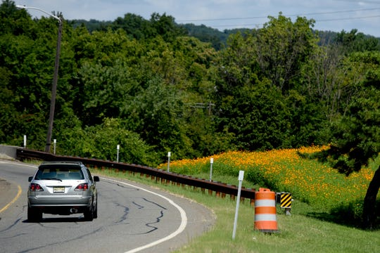 Orange wildflowers grow in median of the Garden State Parkway just north of Route 3 overpass in Clifton on Thursday, August 30, 2018.