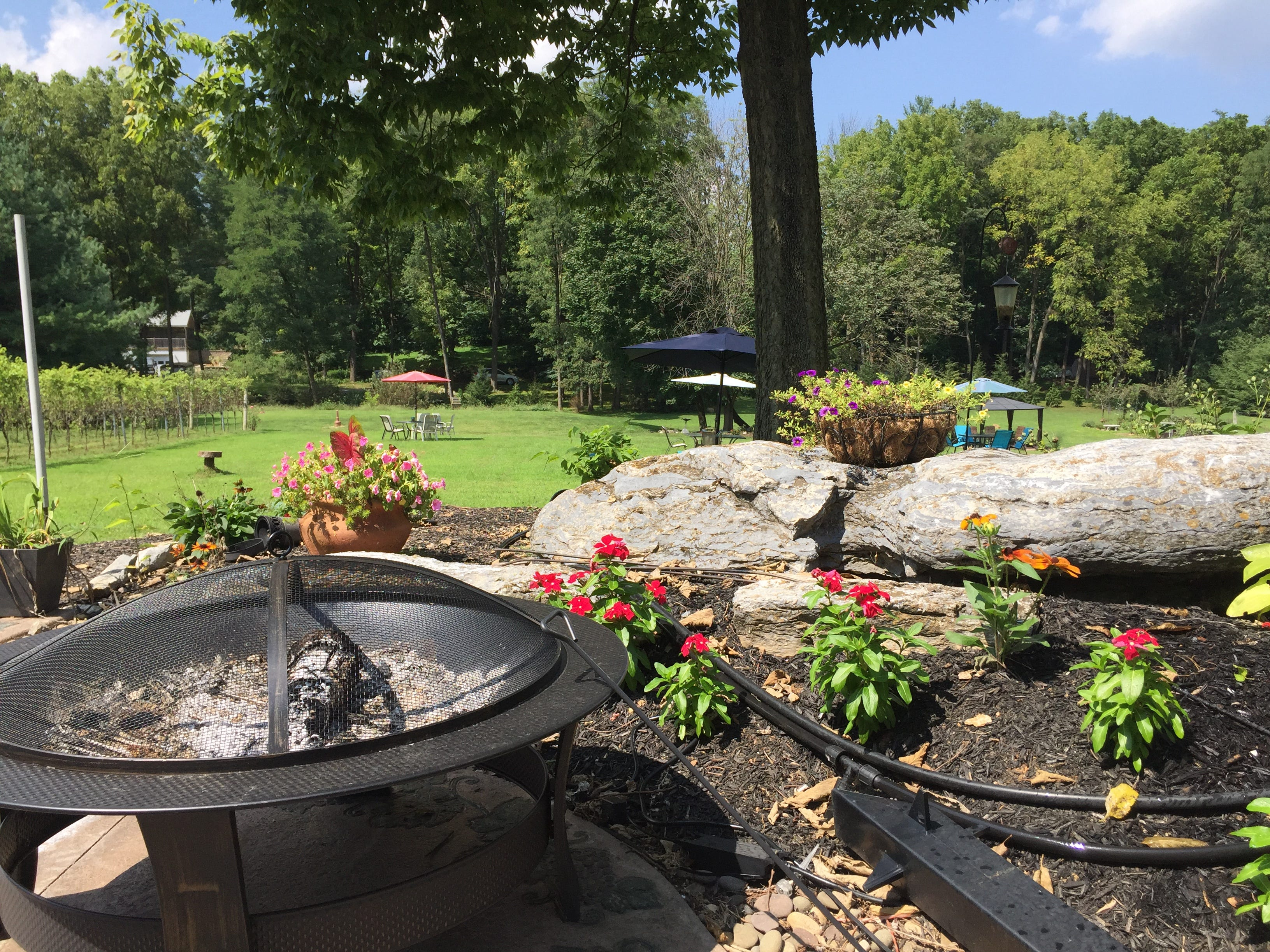 A view from the outdoor area of the tasting room at Royal Oaks Vineyard & Winery located at 399 Royal Road, Aug. 29, 2018. The winery has remained open despite an ongoing legal battle over zoning issues between Bill Hartmann, the winery's owner, and North Cornwall Township.