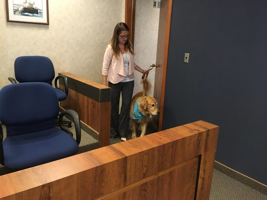 Cortney Carl walks Bruin into an empty courtroom Thursday to continue his training to be able to comfort children as they testify.