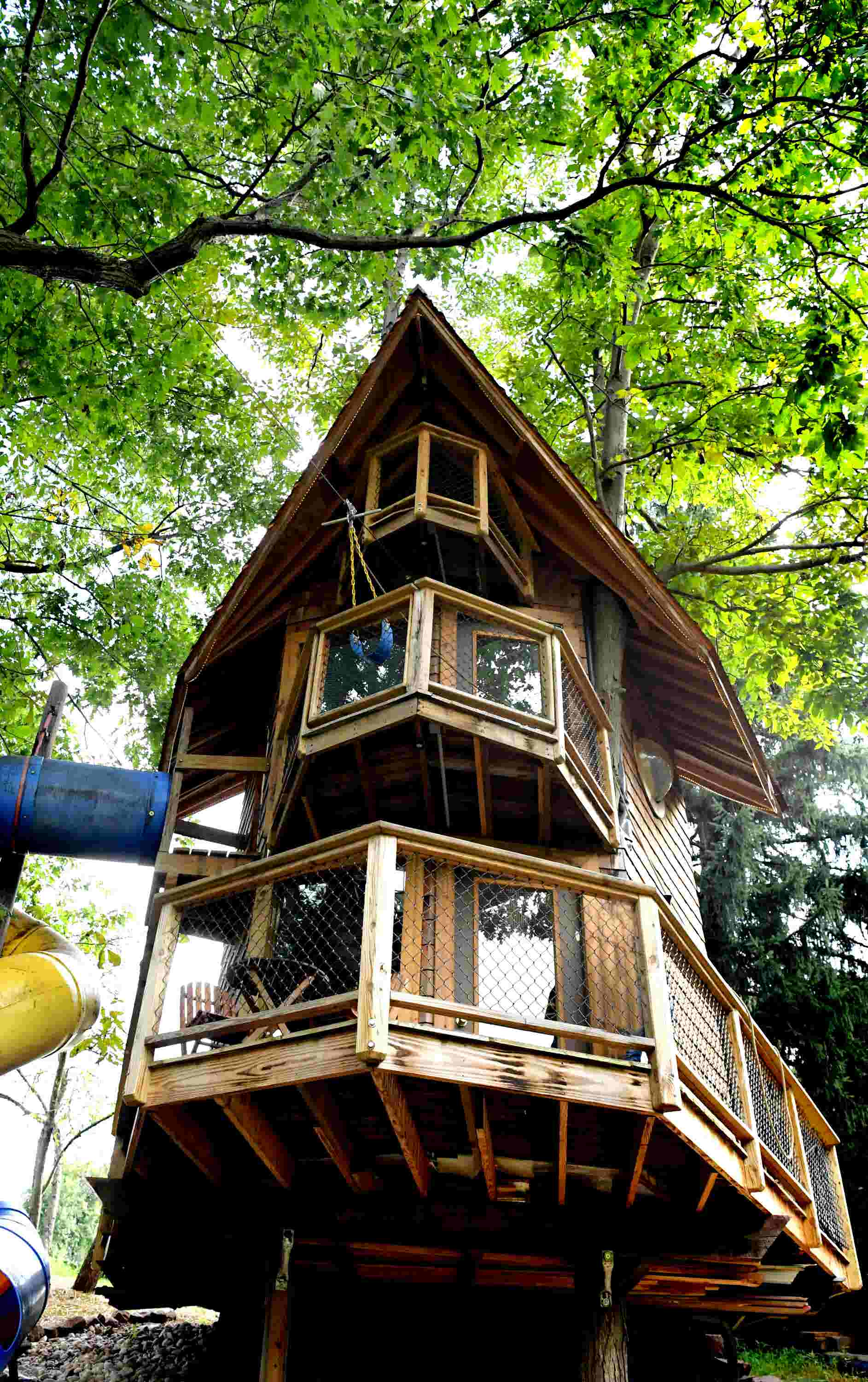 mega treehouse in goldsboro brings out inner child has recycling