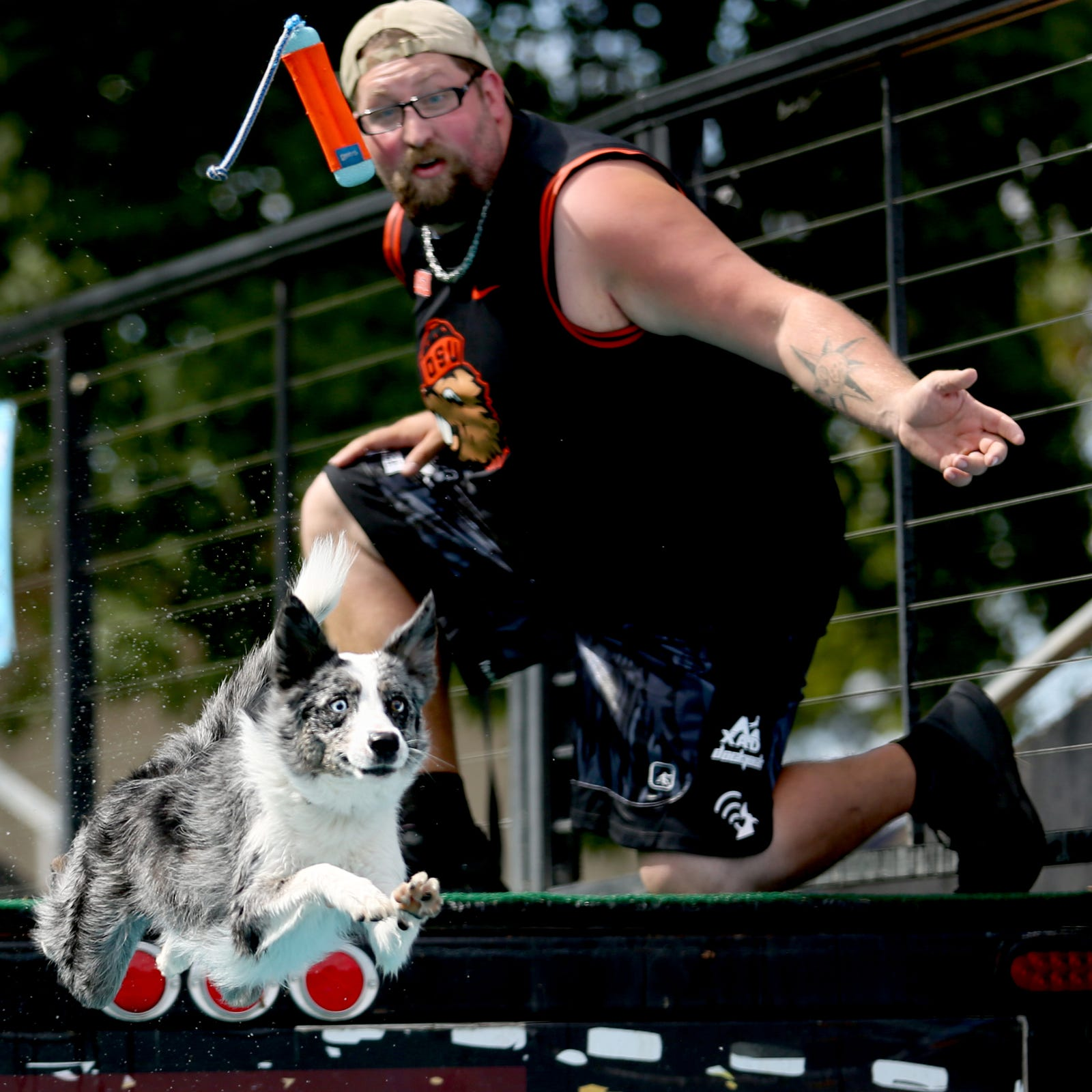 Dogs doin' big dives: X-Treme AirDog World Championships Sept. 1-3
