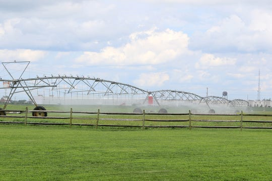 The six fields that make up the Levels Road sports complex are currently used by the Town of Middletown to spread treated wastewater through spray irrigation rigs. With the town in the process of building nine new rapid infiltration basins (RIBs) on nearby town-owned land, the spray rigs won't be necessary in the future.