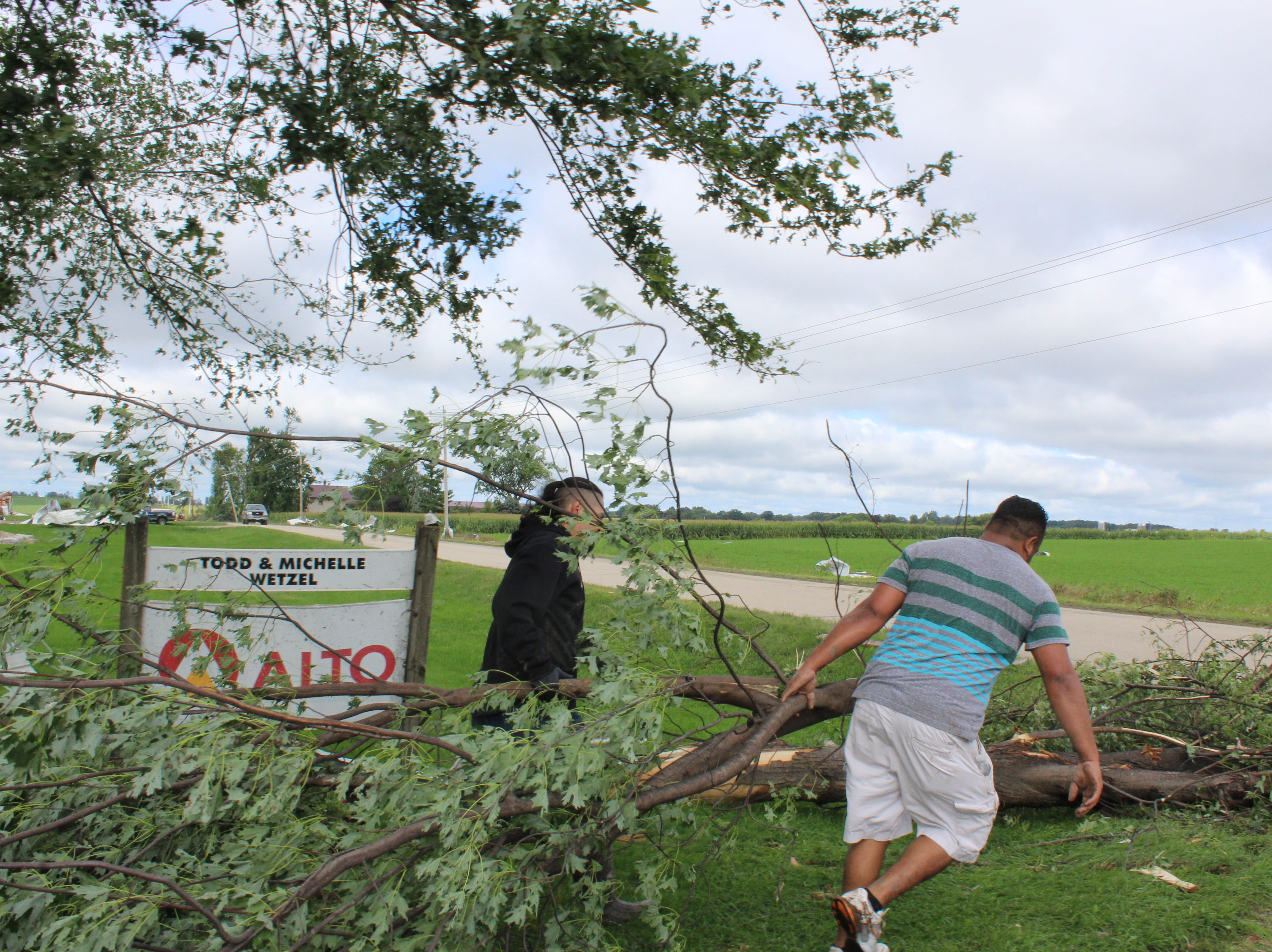 Volunteers clear the farmyard of downed tree limbs.