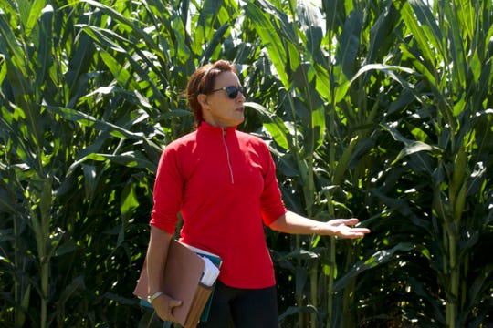 Heidi Kaeppler of the Wisconsin Crop Innovation Center, described new technology that can drastically reduce the time needed for genetic transformation of crops.