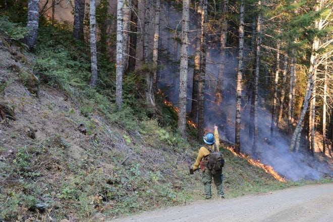 The Maple Fire continues its slow expansion on the Olympic Peninsula.
