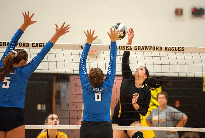 Colonel Crawford's Izzie Stalter spikes the ball against the Wynford defense.