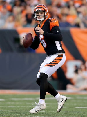 Cincinnati Bengals quarterback Jeff Driskel (6) looks to throw downfield in the second quarter during the Week 4 NFL preseason game between the Indianapolis Colts and the Cincinnati Bengals, Thursday, Aug. 30, 2018, at Paul Brown Stadium in Cincinnati.