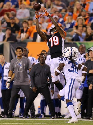 Cincinnati Bengals wide receiver Auden Tate (19) completes a catch along the sideline in the second quarter during the Week 4 NFL preseason game between the Indianapolis Colts and the Cincinnati Bengals, Thursday, Aug. 30, 2018, at Paul Brown Stadium in Cincinnati.