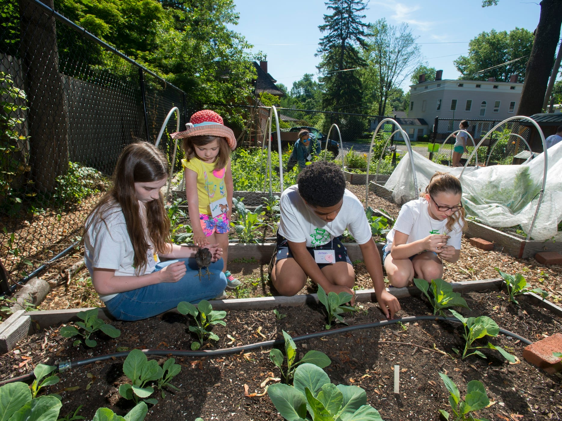 Rutgers extension services help run a 4-H summer camp at the Montclair Community Farm. Participants include from left to right Cecilia Martinez, Kaley Ogara, Jordan Booker and Delaney Picoli.