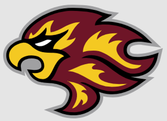 Indiana Firebirds logo