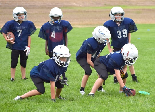 Players on the fifth- and sixth-grade Cowboys team in the city of Fort Collins youth tackle football program practice lining up and firing off the ball during agility drills at the start of a practice Thursday in Windsor.
