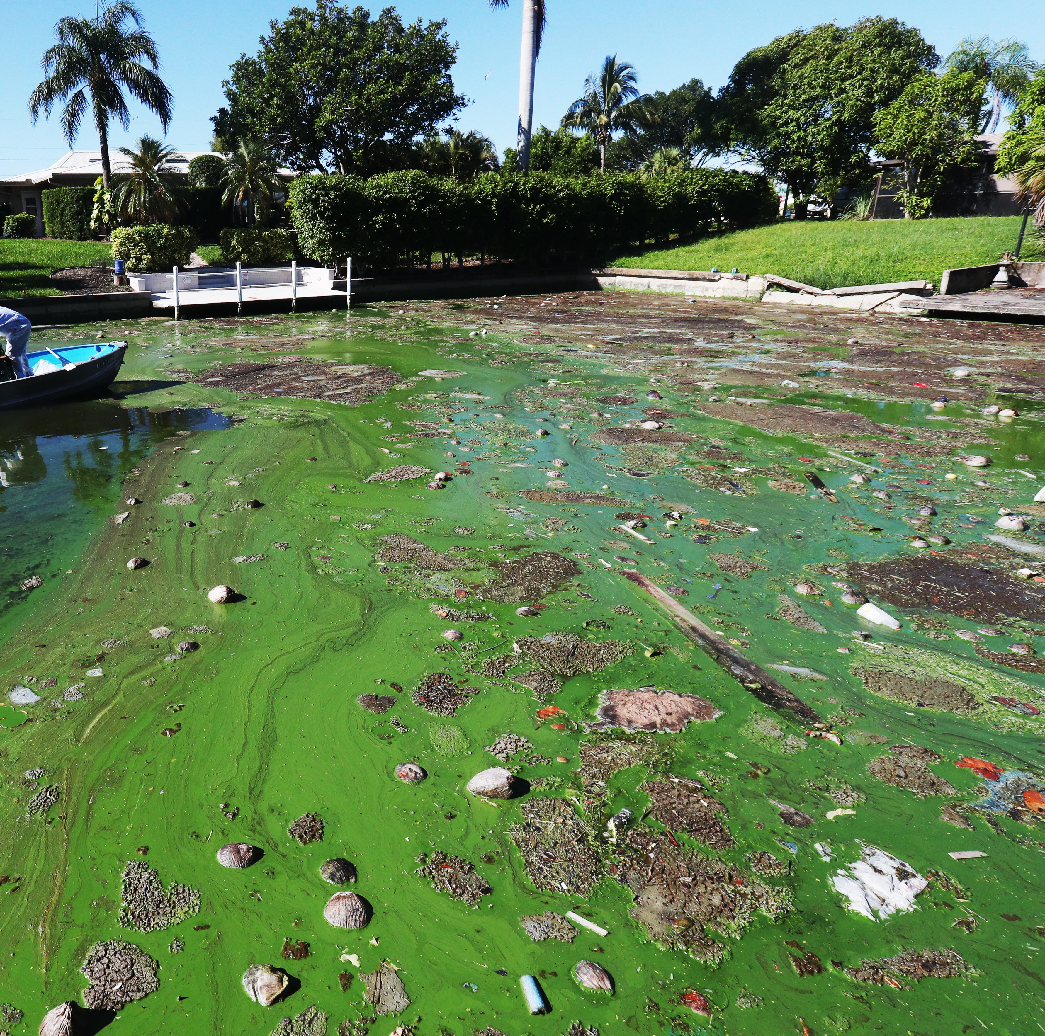 Turning the Toxic Tide: Florida needs new approach to environmental regulation