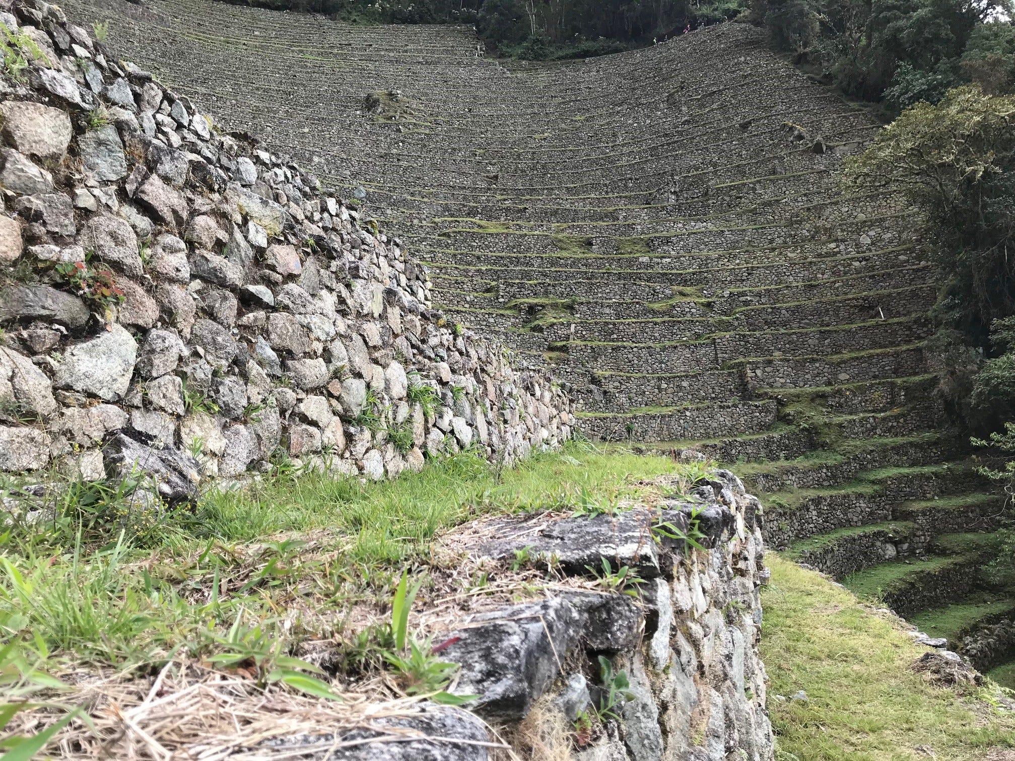 Inca terraces on the Inca Trail
