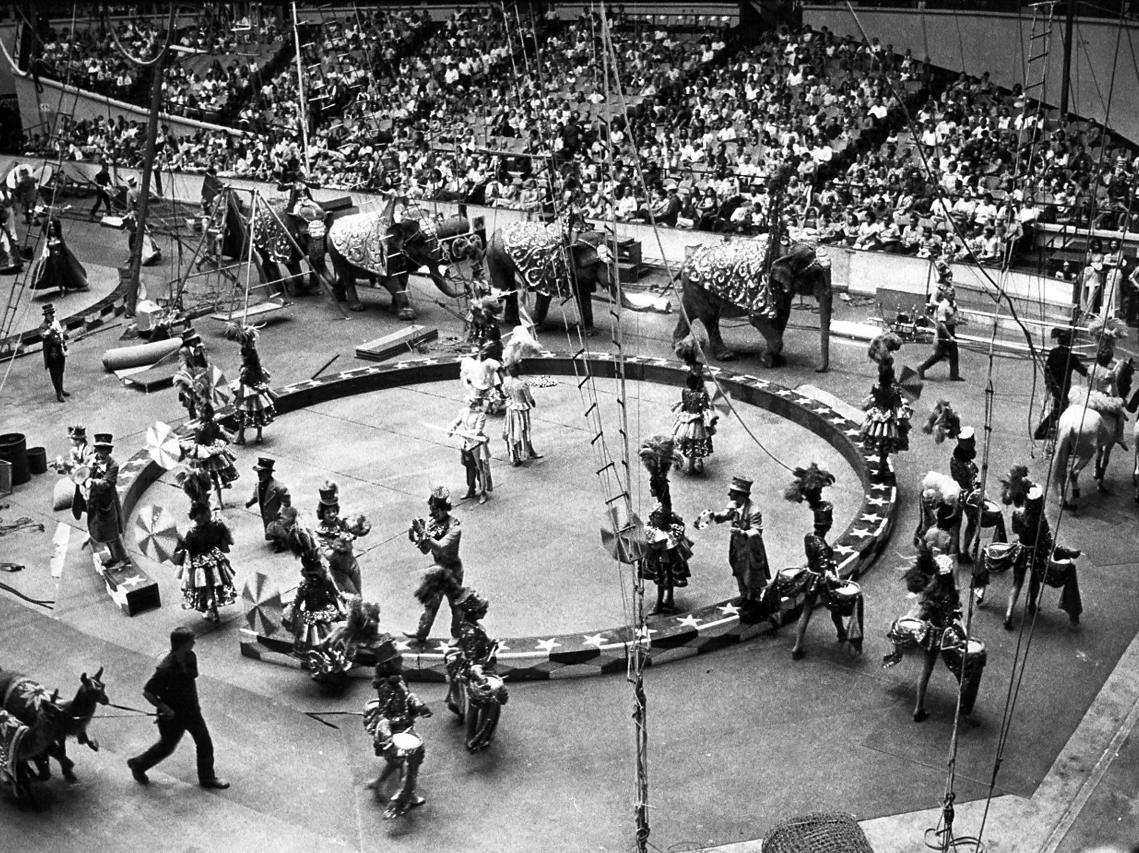 Clowns, elephants, horses and llamas are just part of the excitement as Ringling Brothers and Barnum & Bailey Circus opens at the Mid-South Coliseum on 26 Jul 1974.