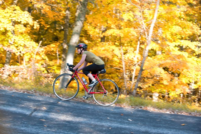 Experience the fall color by bicycle.