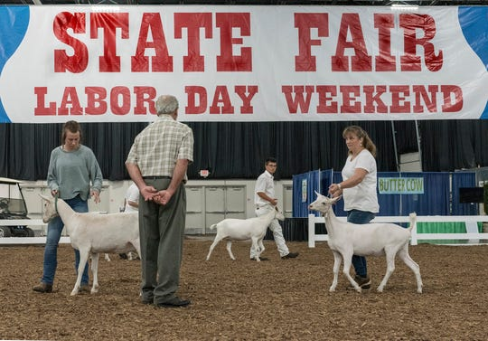 Livestock judging at the Michigan State Fair at the Suburban Collection Showplace in Novi.