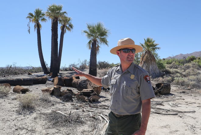Joshua Tree park superintendent David Smith talks about arson caused fire in March 2018 that burned plants and trees in the Oasis of Mara in Twentynine Palms.