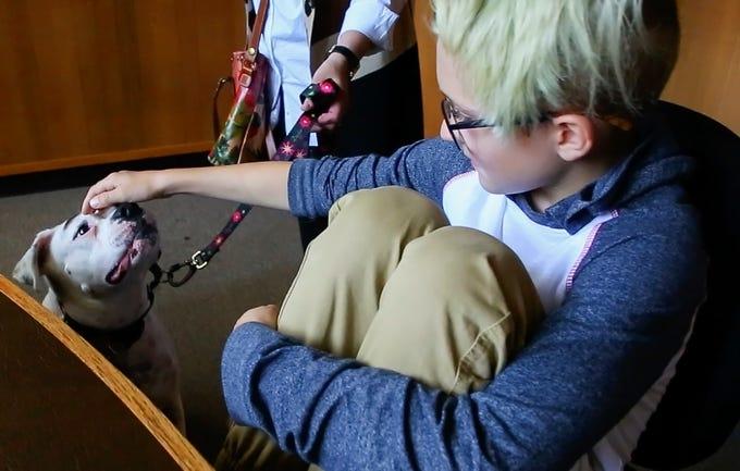 Therapy Dog Training Salem Oregon