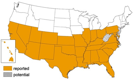 "A map of where the ""kissing bug"" has been reported in the United States."