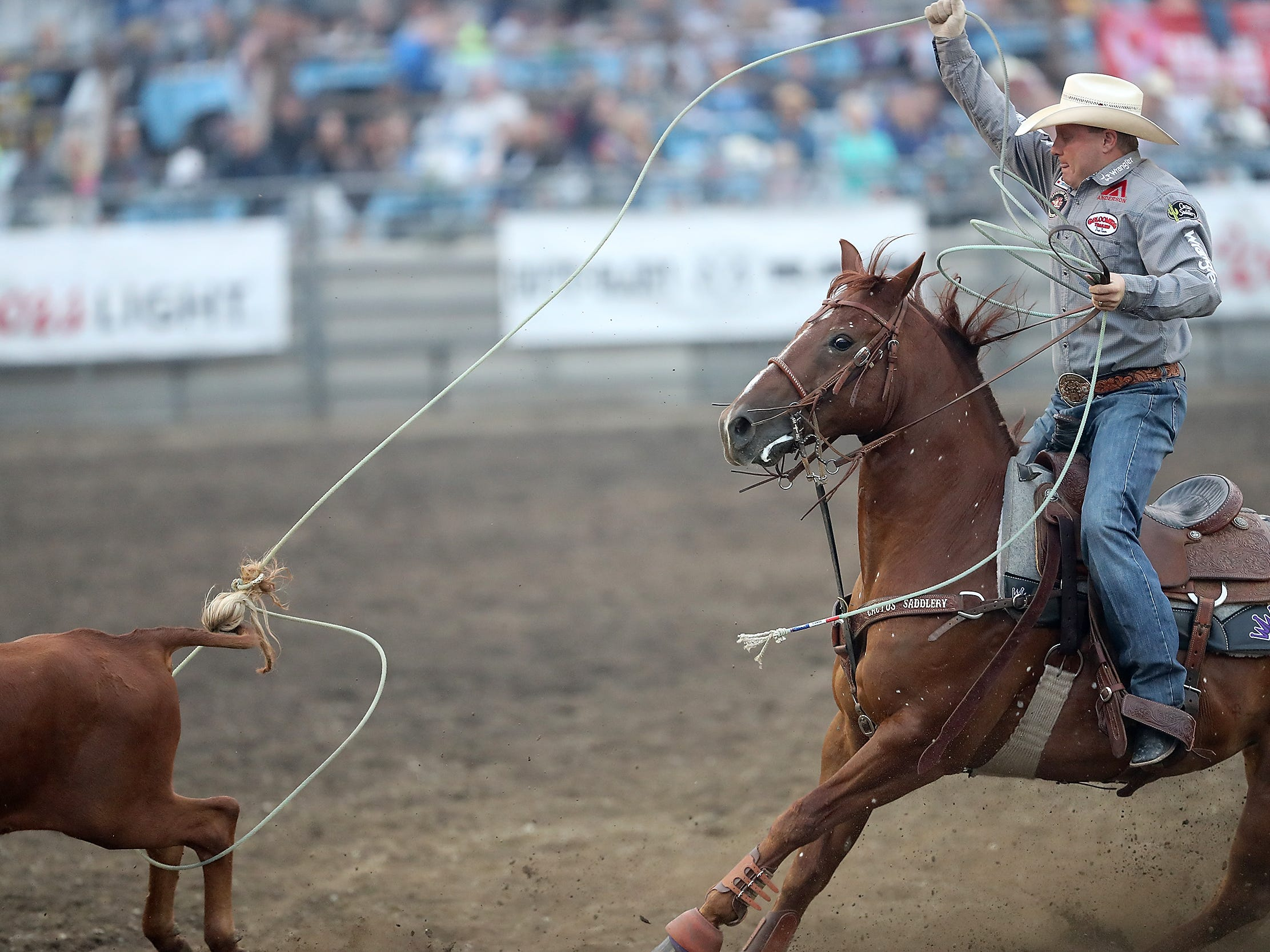 Brady Minor, or Ellensburg, WA,  ropes the heels of a steer during the Team Roping event at the Kitsap County Fair & Stampede on Friday, August 24. 2018.