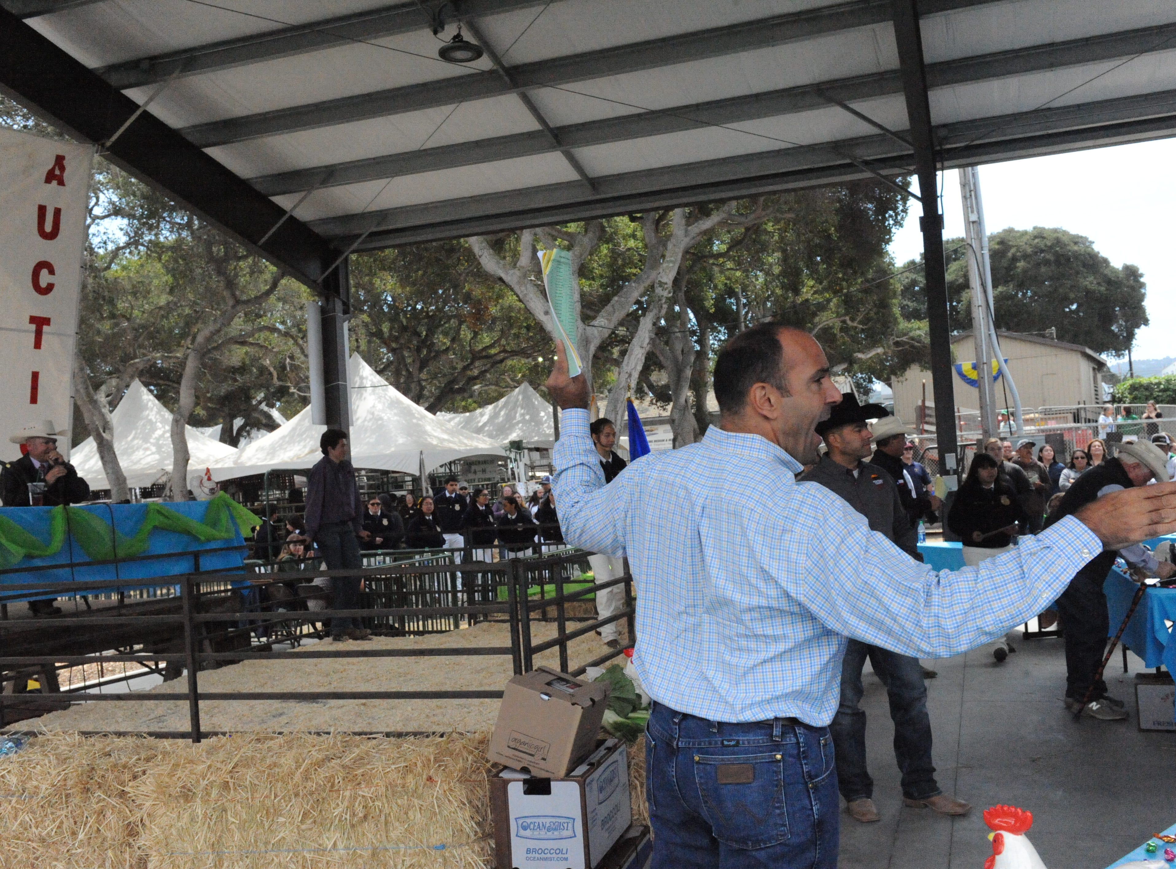 Rep. Jimmy Panetta helps with the Monterey County Fair's Junior Livestock Auction on Saturday.