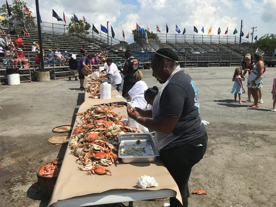 Contestants pick crab during the 71st Annual National Hard Crab Derby on Saturday, Sept. 1 at Somers Cove Marina in Crisfield.