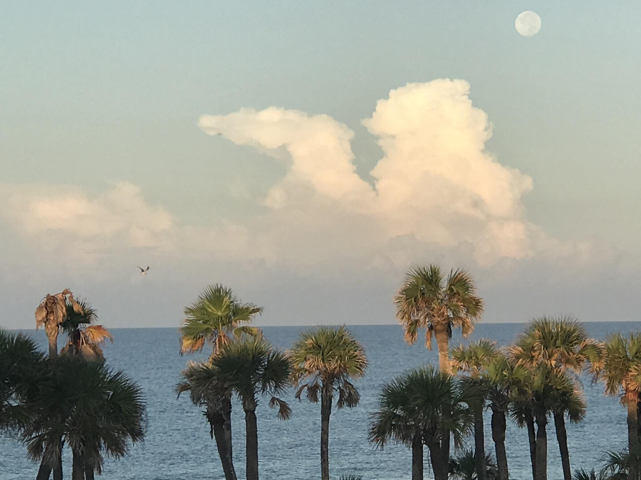 Full moon morning at Panama City Beach