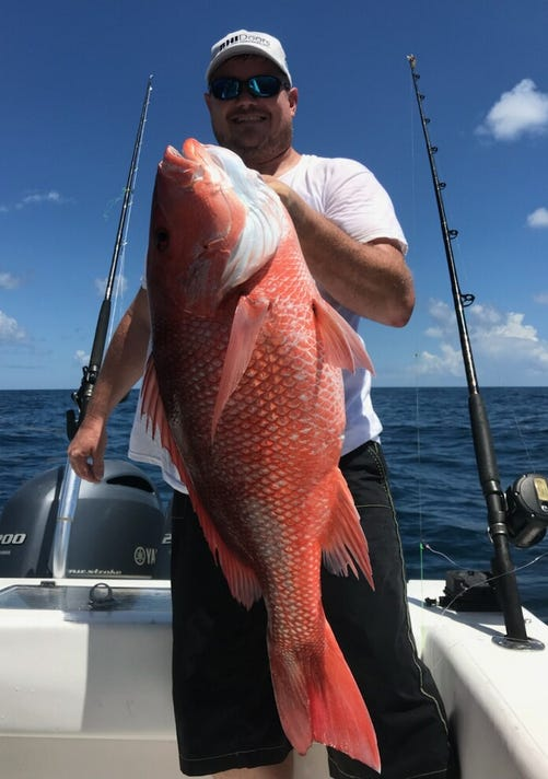 Red Snapper Albritton 5