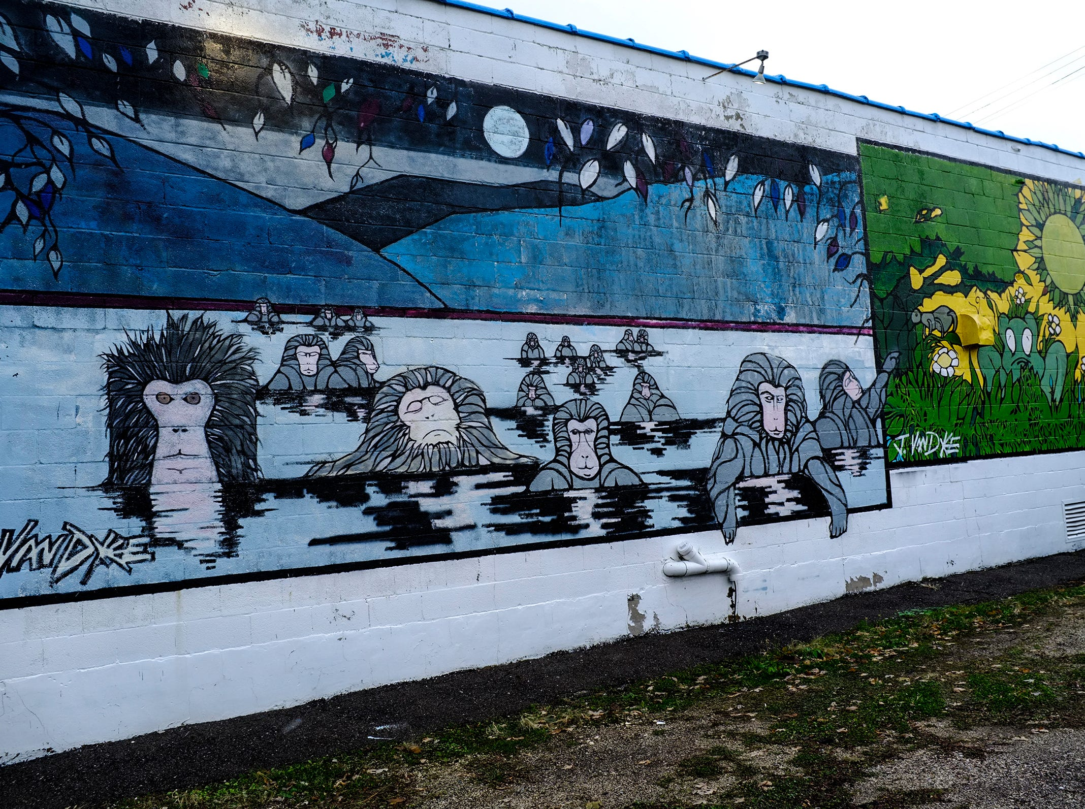 The wall at Hot Water Works at 2116 E. Michigan Avenue in Lansing by Julian VanDyke.