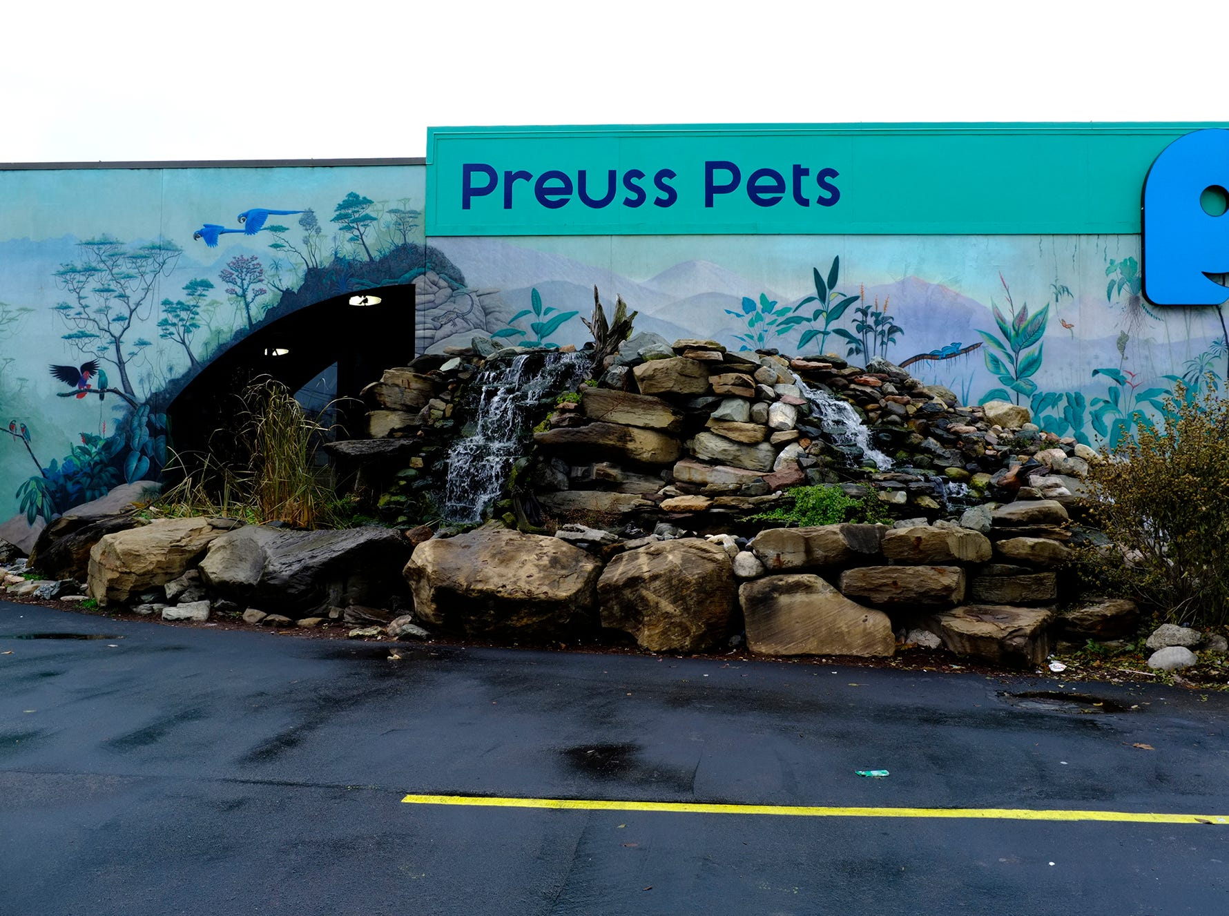 Preuss Pets at 1127 N. Cedar Street in Lansing's Old Town fittingly displays an aquarium theme on its building.