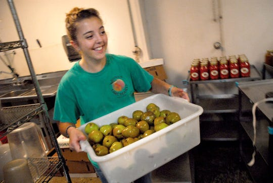 August 31, 2018 - Mary Barns carries freshly washed pears into the kitchen at Jones Orchard in Millington, Tennessee. Jones Orchard has been in operation since 1940 growing, processing farm fresh produce and selling jams, jellies, preserves, and relishes made with their own fruit.