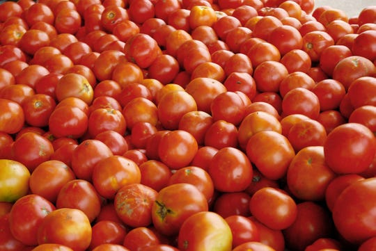 Vine-ripened tomatoes are a favorite at Jones Orchard in Millington, Tenn. The orchard has been in operation since 1940, growing and processing farm-fresh produce, selling jams, jellies and preserves, and selling relishes made with its own fruit.
