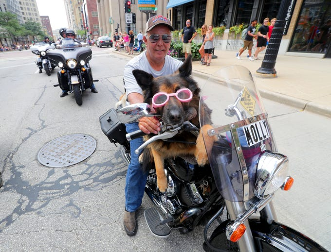 Molly the Motorcycle Dog gets a ride during the parade. The Harley-Davidson 115th anniversary parade included thousands of motorcycles traveling through the streets of Milwaukee on Sunday.  The parade started at Miller Park and continuedeast on Wisconsin Avenue through downtown, ending at the lakefront.