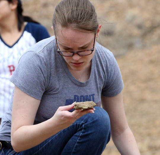 Christine Harrison checks rocks at the site of a known fossil bed Sunday.