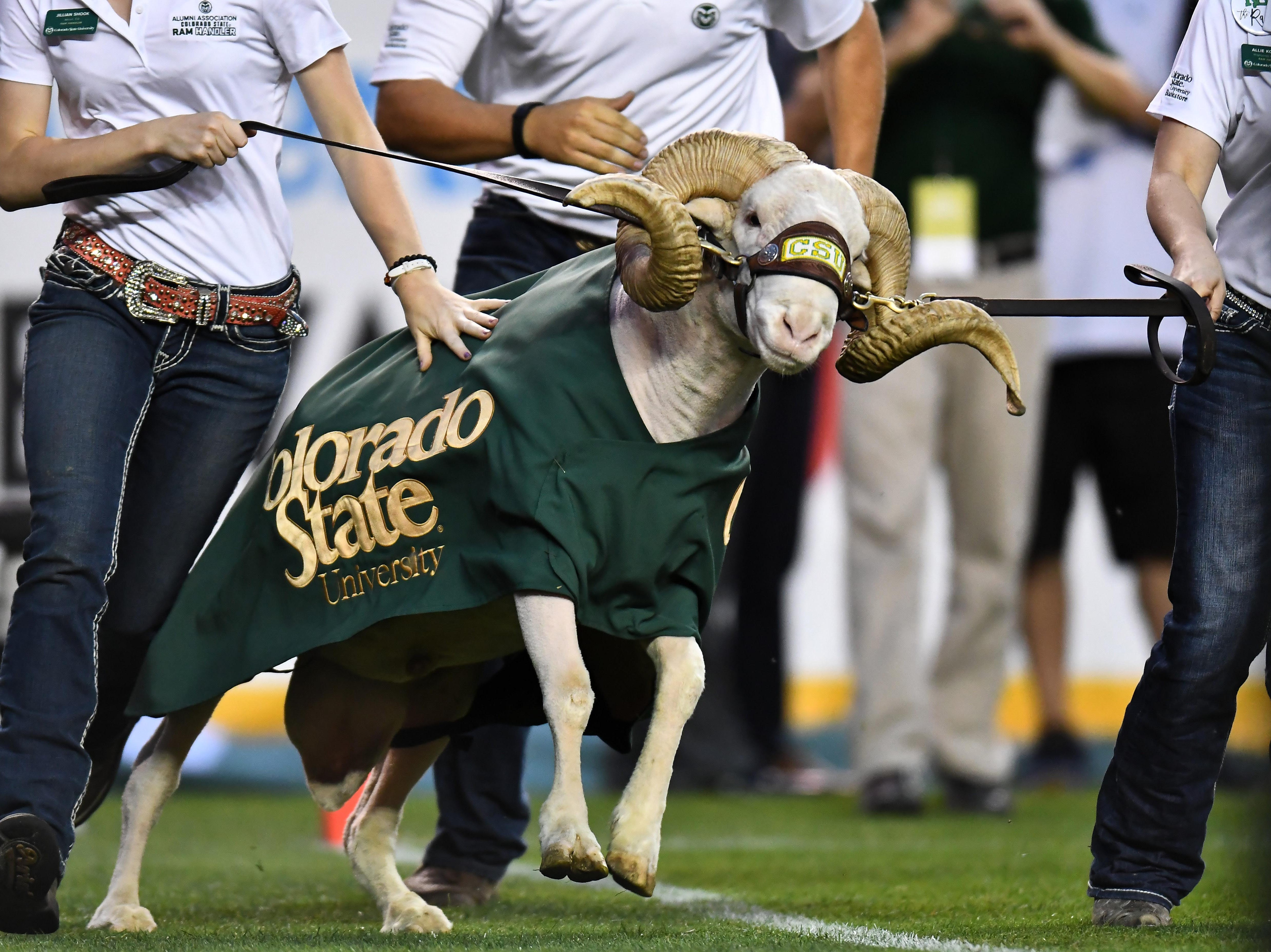 Week 1: Colorado State Rams mascot Cam the Ram runs out to the field to start the second half vs. the Colorado Buffaloes at Broncos Stadium at Mile High.