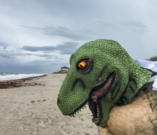 On Labor Day 2018 at Pelican Beach, there were very few beachgoers. The ones who were there were from Make 'Em Laugh Films, who were filming a humorous video for their YouTube channel. The lizard is Bob Leatherow.