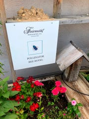 "In this June 27, 2018 photo, The Fairmont Hotel, along with hosting honeybees, provides a ""hotel"" for wild, independent bees in Washington."