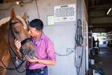 Julio Mendoza, of Ecuador, a fourth generation rider in dressage, will be competing for his country in the World Equestrian Games in Tryon