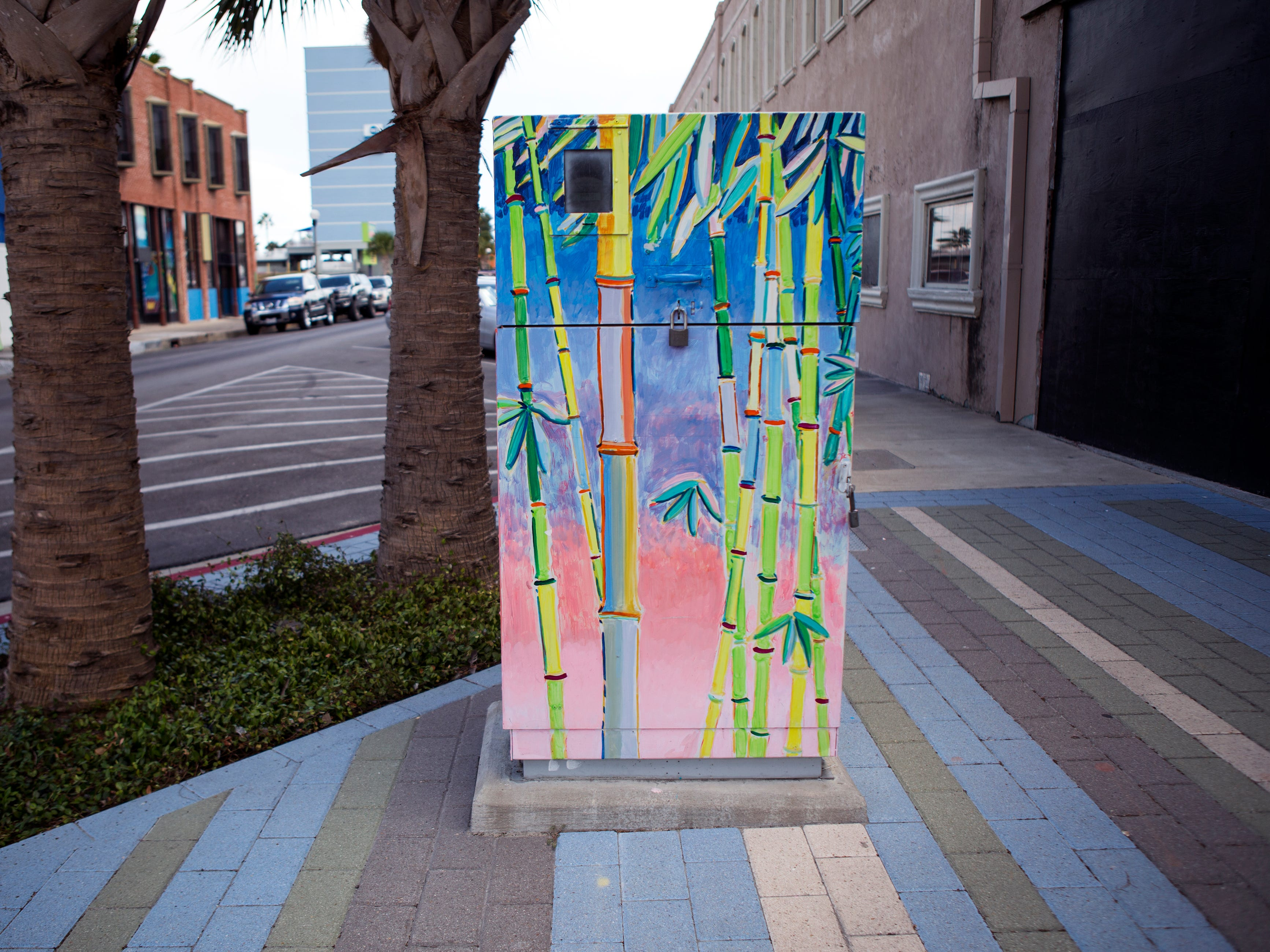 A painted utility box in downtown Corpus Christi is located near the corner of William and N. Chaparral streets. The Downtown Management District began the process of having the boxes painted in 1997 with a program called Art Sparks. The program allowed students interested in art to paint the boxes over the summer under the supervision of a teacher and get paid for their work. In 2004, the district began using commissioned artists.