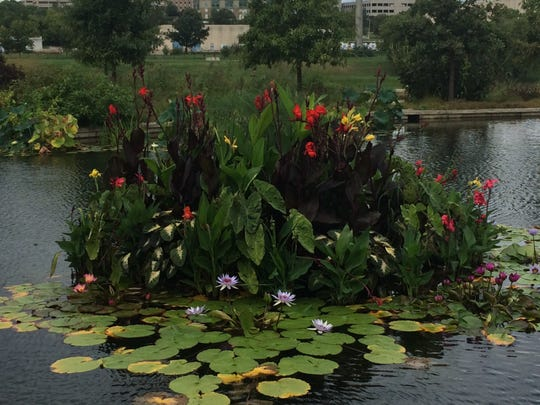 Flowers and lily pads are part of the experience of Trellis Cafe in the Greater Des Moines Botanical Gardens