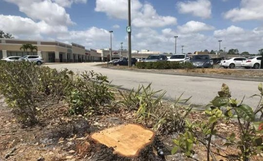 Work began last spring to remove trees to provide a better view of the Merchants Crossing plaza on US 41 in North Fort Myers. The next steps include facade improvements and possible redevelopment of the site of a long-closed Sears store into residential housing.