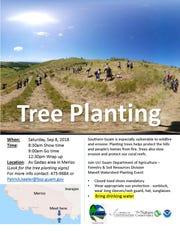 Tree planting in As Gadao area, Merizo