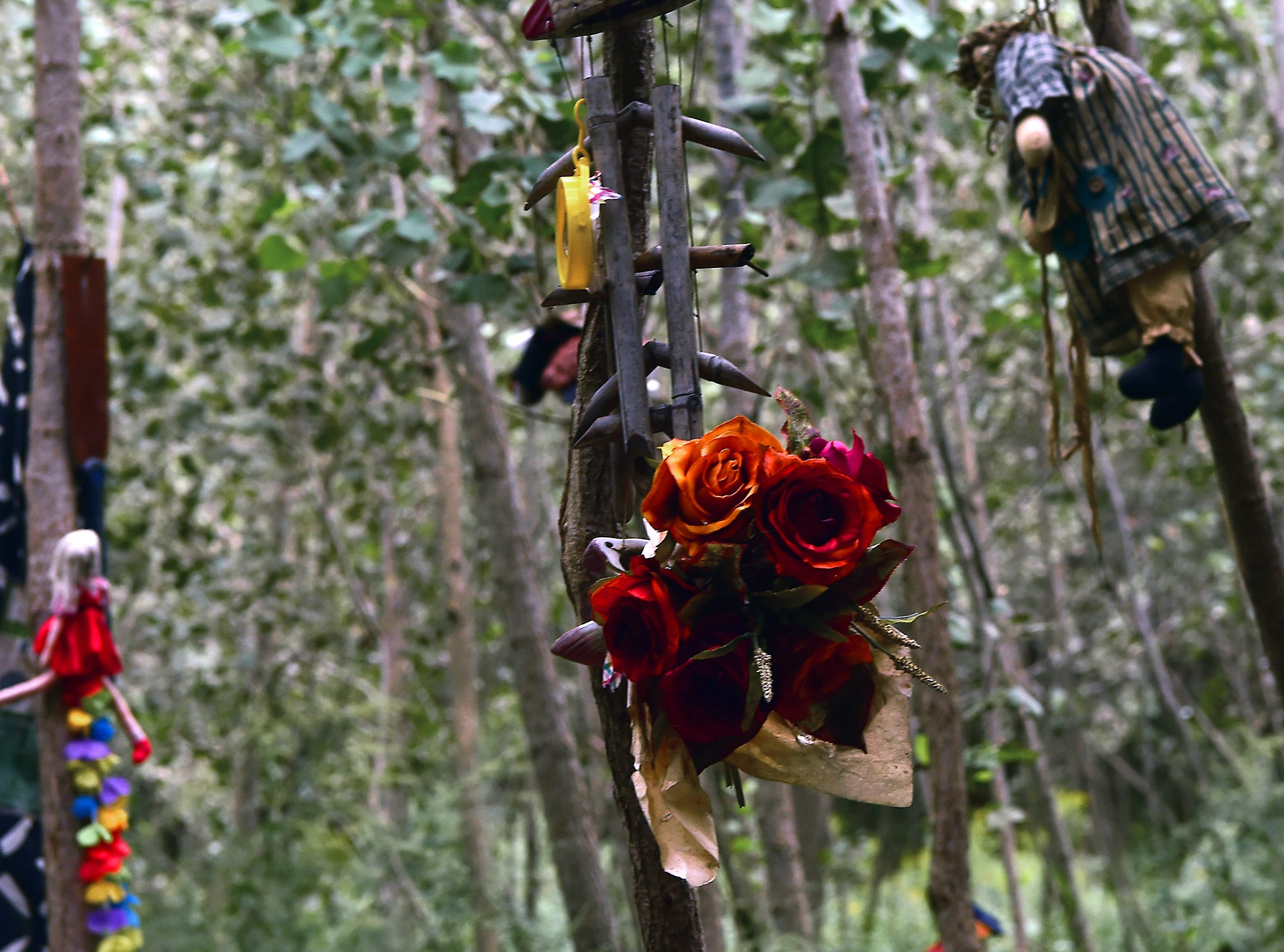 Decorations hanging from trees surround the camp of a homeless woman in Ithaca's Jungle on August 31, 2018.