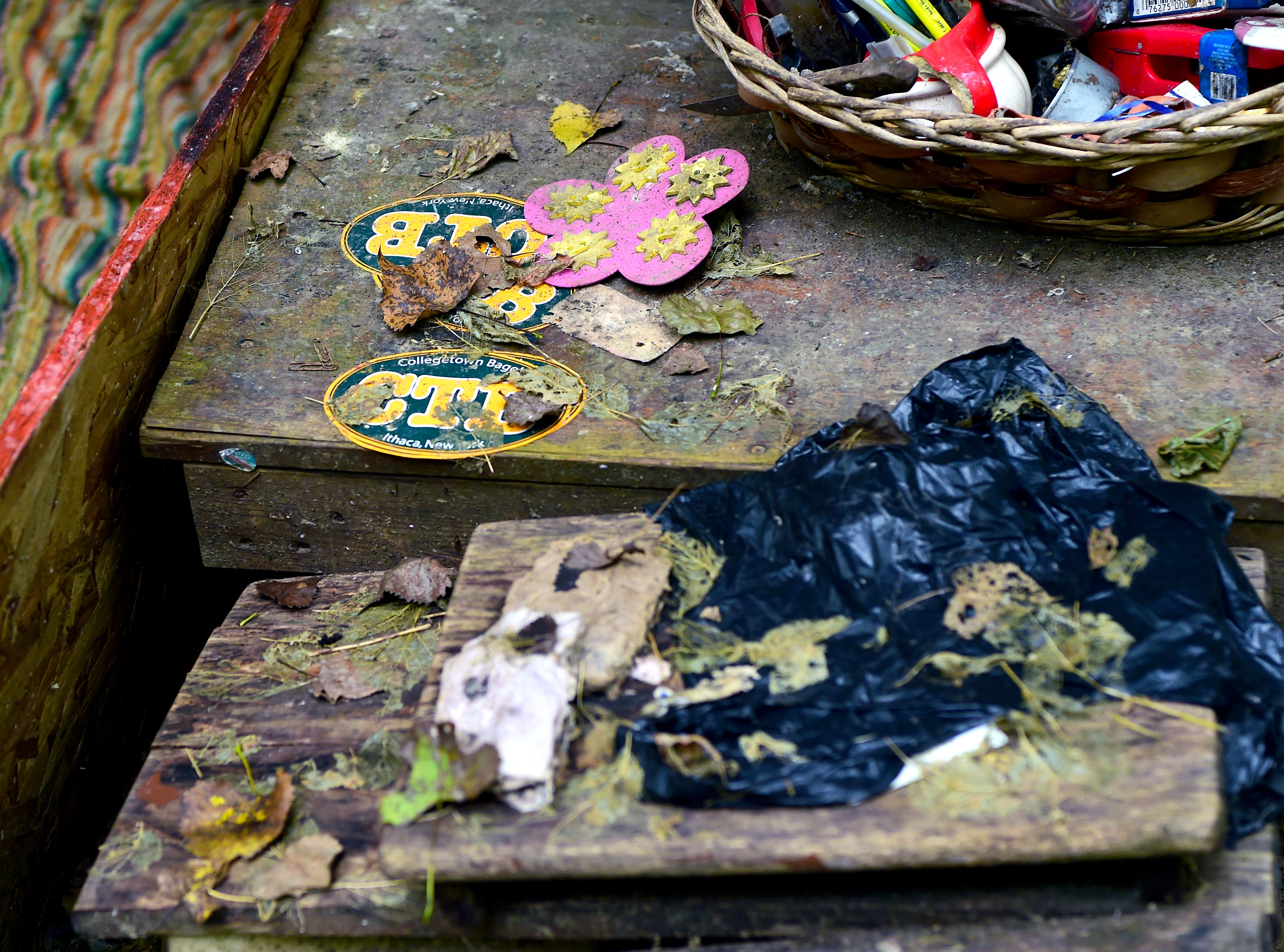 """Belongings of a homeless person in Ithaca's """"Jungle."""""""