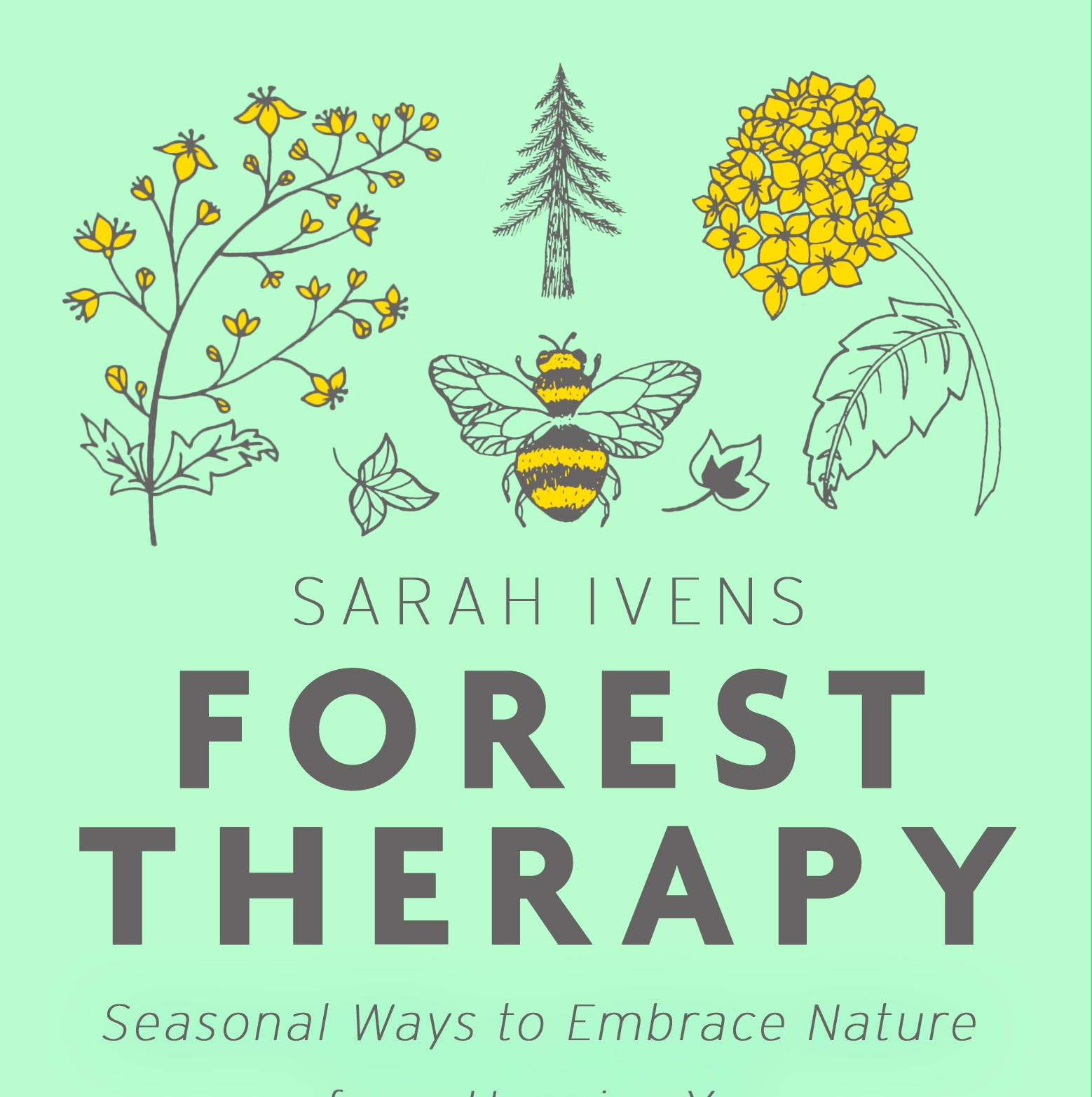 Ever thought about 'forest bathing?' It's not as weird as it sounds