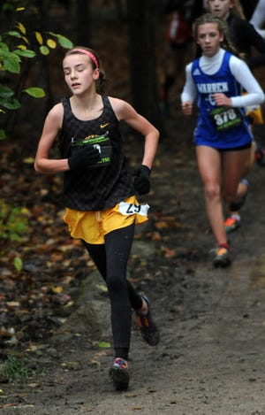 Buckeye Valley's Chloe Dawson competes at the regional cross country meet was held last year at Pickerington North High School in Pickerington.